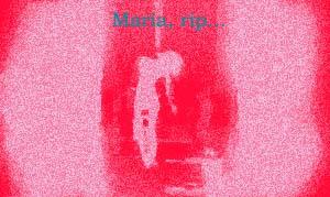 suicide-300x179 copy